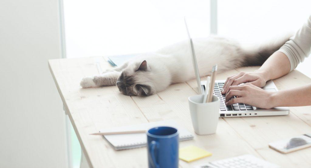 Benefits of Desktop as a Service